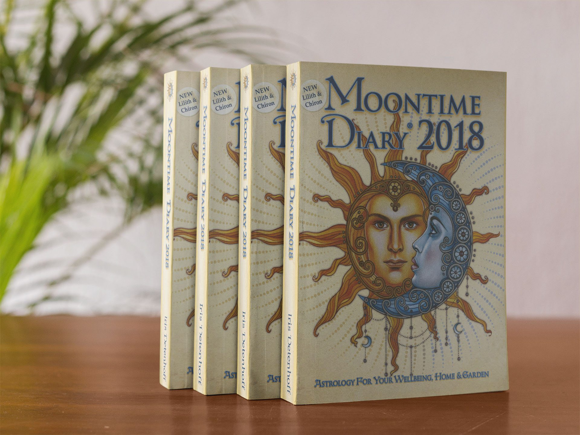 My Review of 2018 Moon Diaries & Calendars | The Moon Woman