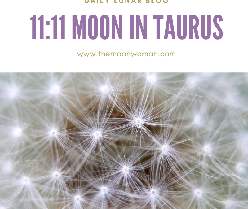 11:11 Moon in Taurus
