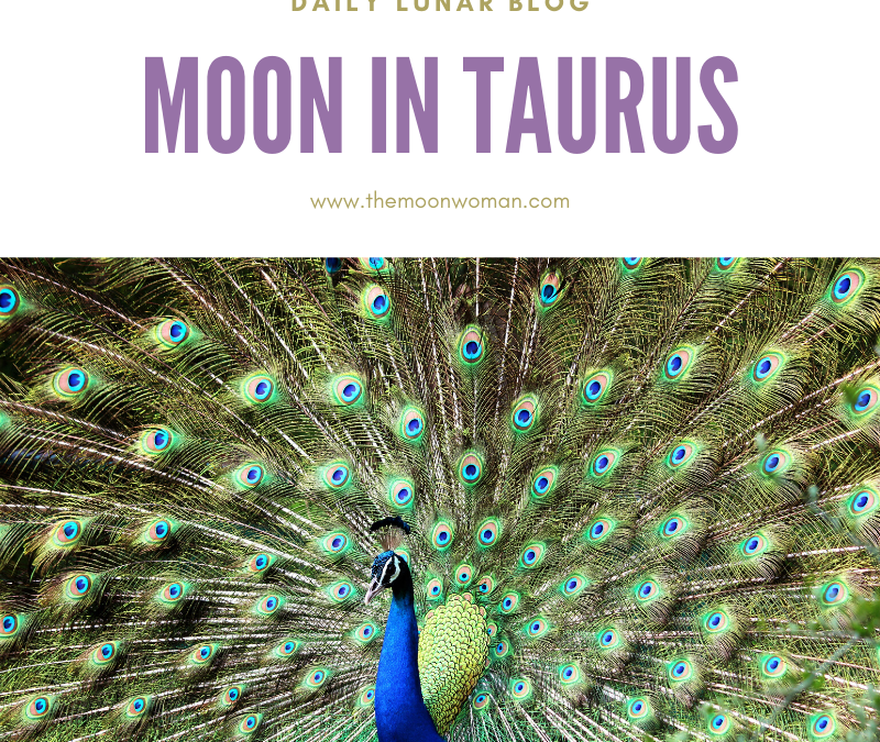 Moon in Taurus